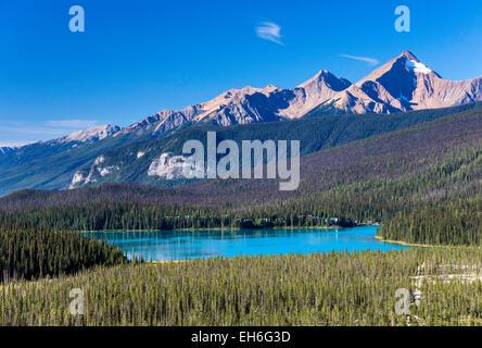 Hamilton Sporn Bergkette über Emerald Lake, aus Yoho Pass Trail, Canadian Rockies, Yoho Nationalpark, Britisch-Kolumbien - Stockfoto