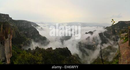 Copper Canyon im Norden Mexikos - Stockfoto