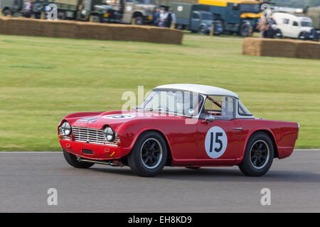 1962 tRiumph TR4 mit Fahrer Chris Ryan, Fordwater Trophy Rennen, 2014 Goodwood Revival, Sussex, UK. - Stockfoto