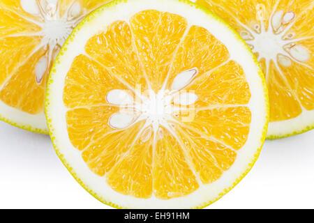 Frische Meyer-Zitronenscheibe Früchte Brei Gesundheit niemand - Stockfoto