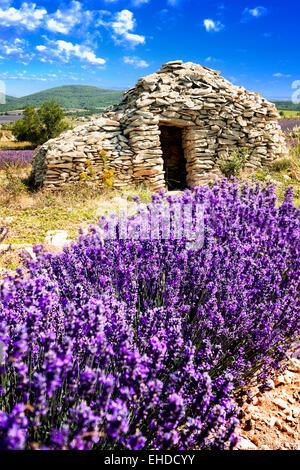 Kleinen Caban Lavendel Sommer Sonnenuntergang in Provence, Frankreich. - Stockfoto
