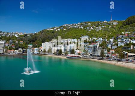 Brunnen, Oriental Bay, und Mt Victoria, Wellington, Nordinsel, Neuseeland - Antenne - Stockfoto