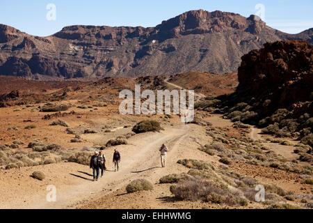 Wandern im Nationalpark Teide, Teneriffa, Kanarische Inseln, Spanien, Europa - Stockfoto