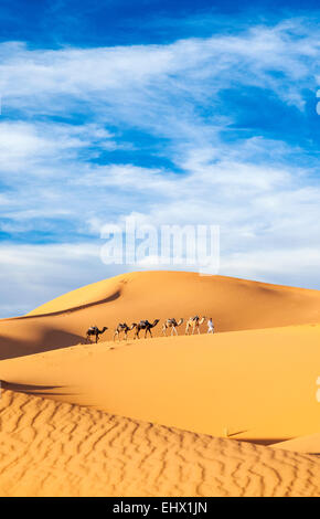 Berber Mann an der Spitze Kamel Zug in Sahara Wüste, Erg Chebbi, Marokko - Stockfoto