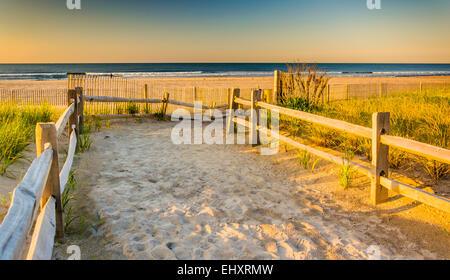 Weg über Sanddünen bis zum Atlantischen Ozean bei Sonnenaufgang in Ventnor City, New Jersey. - Stockfoto