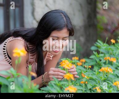 Junge Frau, die Blumen im Garten pflücken - Stockfoto