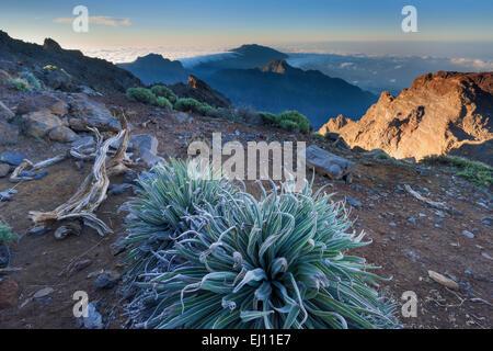 Roque de Los Muchachos, Spanien, Europa, Kanarische Inseln, La Palma, Nationalpark Caldera de Taburiente, Aussichtspunkt, - Stockfoto