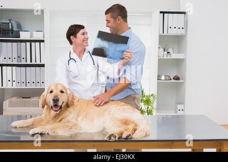 Tierarzt, Röntgen, Hundebesitzer zeigen - Stockfoto