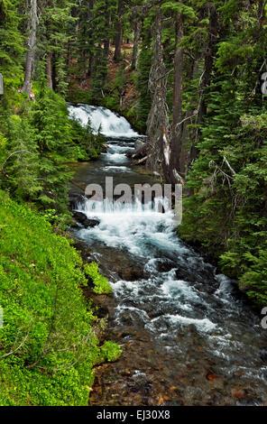 Oregon Wasserfall Und Kaskaden Entlang Green Lake Trail In Drei