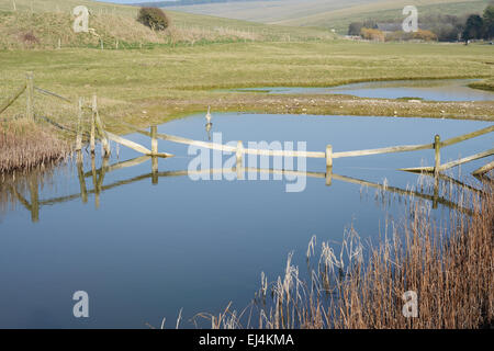 Sussex Landschaft - England - Stockfoto