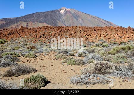 Pico del Teide, Parque Nacional del Teide, Teneriffa, Kanarische Inseln, Spanien. - Stockfoto