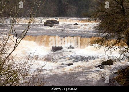Oberen Aysgarth fällt auf den Fluß Ure in Aysgarth Village, North Yorkshire Dales, England UK - Stockfoto
