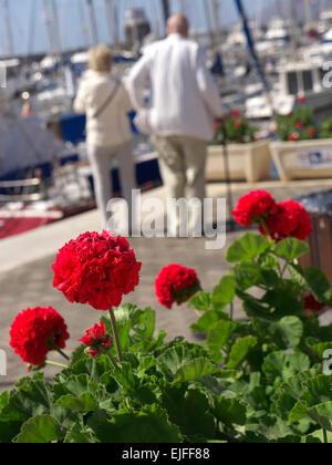 Ältere Ferienhaus Urlaub für Behinderte Rentner reifes Paar im sonnigen Urlaub marina Einstellung - Stockfoto