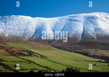 Caherconree Berge im Winter, Slieve Mish Mountains, der Halbinsel Dingle in der Grafschaft Kerry, Irland. - Stockfoto
