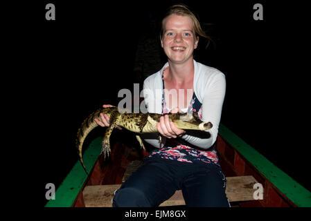 Touristen halten eine kleine gemeinsame Brillenkaiman, Caiman Crocodilus, Matapica, Surinam - Stockfoto
