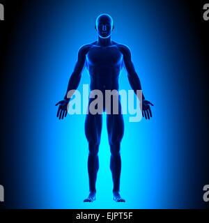 Ganzkörper - Ansicht von vorne - Blue concept - Stockfoto