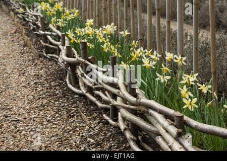 Nutzung der verfing Haselnuss-Filialen, gewundenen kleinen Zaun Garten Zuteilung wie Flechten mit Weide zu erstellen - Stockfoto