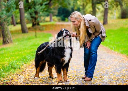 Frau und Hund beim Abrufen von stick spielen im Herbst Park auf Feldweg - Stockfoto