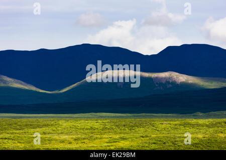 Alaska Range entlang Denali Highway, Alaska, USA - Stockfoto