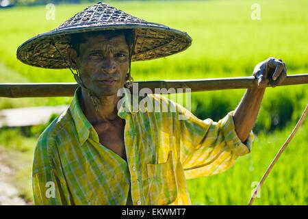 Ein Mann steht In einem Feld In einer ländlichen Gegend außerhalb Sylhet; Bangladesch - Stockfoto