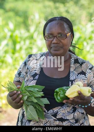 Frau mit frischem Paprika in Manton Bend Gemeinschaftsgarten in Providence, Rhode Island - Stockfoto