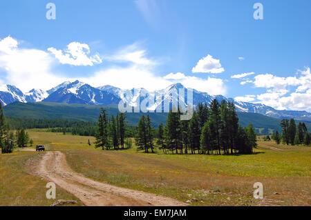 Altai-Sommerlandschaft Russland mit einer Steppe mit Rasen bedeckt und einige Pflanzen, eine Gruppe von Steinen - Stockfoto