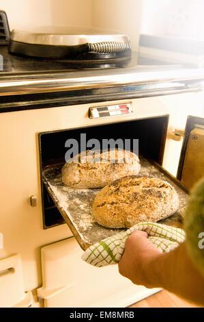 Reifer Mann unter Backblech mit frischem Brot aus dem Ofen - Stockfoto