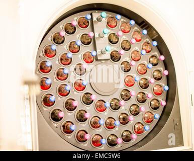 Blutkulturen in einem Labor-Apparat - Stockfoto