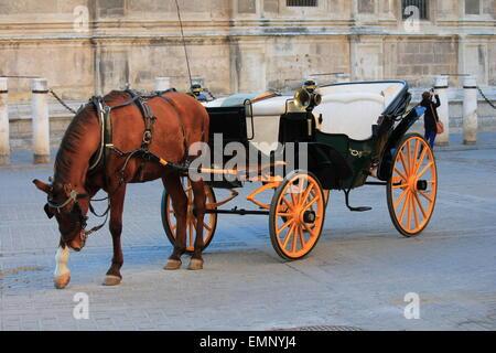 Spanische Pferd und Wagen Sevilla Spanien - Stockfoto