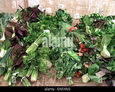 Einfach frischen organischen grünen Anzeige an die Landwirte Markt Embarcadero San Francisco Kalifornien USA - Stockfoto