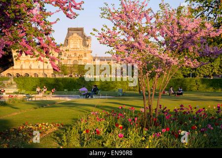 Die Pariser Tuilerien genießen auf einer Feder am Nachmittag, Paris, Frankreich - Stockfoto