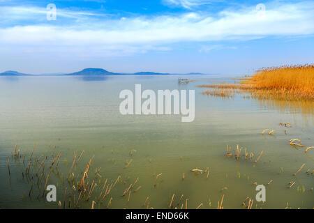 Plattensee in Ungarn im Sommer - Stockfoto