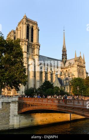 Kathedrale Notre Dame de Paris, Südfassade, Ile De La Cité, Paris, Frankreich - Stockfoto