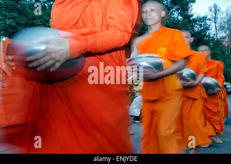 Mönche, die betteln Almosen im Morgengrauen auf den Berg Doi Suthep, Chiang Mai, Thailand, Südostasien, Asien - Stockfoto