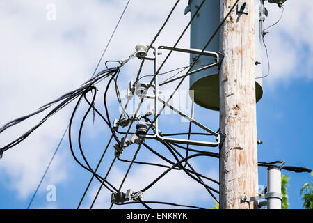 Elektro, Telefon und Kabel-Leitungen auf einen Strommast in ein Oklahoma City, Oklahoma, USA Nachbarschaft. - Stockfoto