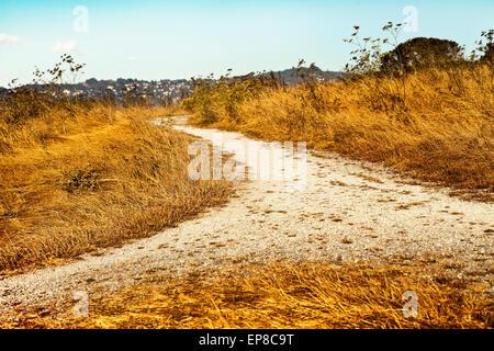 Leere Landschaft Straße durch Felder mit Weizen, Herbsttag, fallen Landschaft - Stockfoto