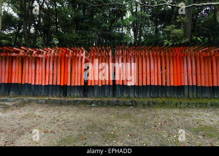 Torii-Tore im Fushimi Inari-Taish-Schrein in Kyoto Japan - Stockfoto