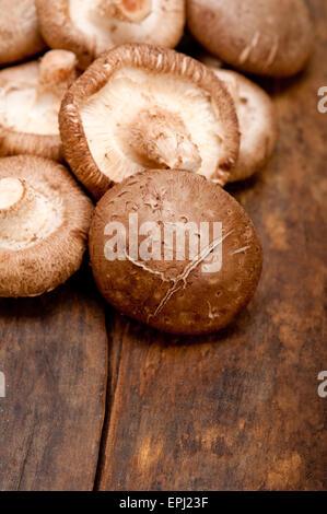 Shiitake-Pilze - Stockfoto