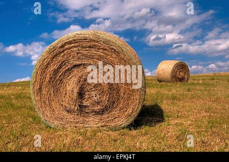 Stroh Ball Verlegung auf dem abgeernteten Feld - Stockfoto