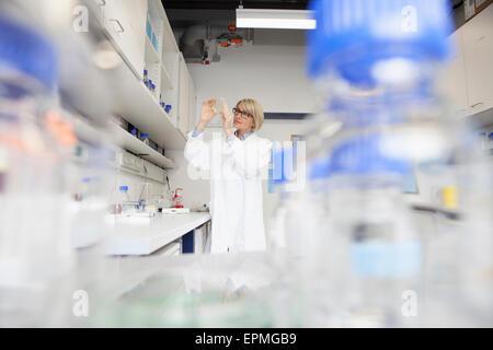 Wissenschaftler mit Petrischale im Labor - Stockfoto