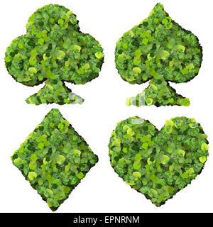 Spielkarte Eco-Symbol, hergestellt aus grünen Blättern, die isoliert auf weißem Hintergrund. 3D Render. - Stockfoto