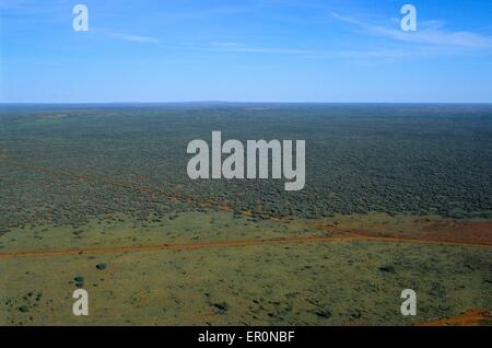 Australien, Northern Territory, Uluru Kata Tjuta National Park in der Nähe von Ayers Rock, Straße im Busch (Luftbild) - Stockfoto