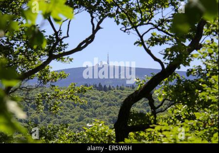 Blick vom Burgberg auf dem Brocken Berg, Bad Harzburg, Harz, Niedersachsen, Deutschland, Europa - Stockfoto