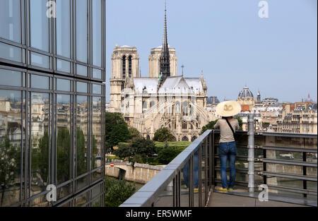 Notre-Dame, Blick vom Institut du Monde Arabe, Paris, Frankreich, Europa - Stockfoto