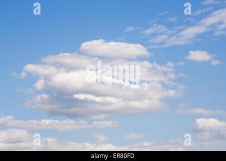 Cumulus-Wolken vor blauem Himmel. - Stockfoto
