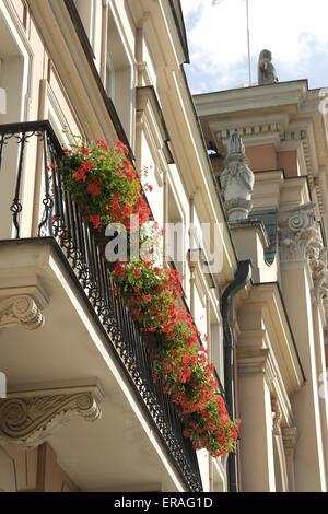 Blauer Himmel weiße Wolken schrägen Porträt rote Blumen Appartementhaus Balkon neben dem Feld Dom, Dluga Street, - Stockfoto