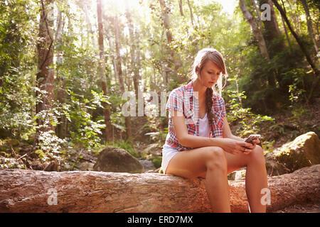 Frau sitzt am Stamm des Baumes im Wald mit Handy - Stockfoto