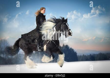Frau reitet Irish Tinker - Stockfoto