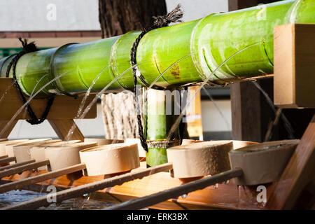 Nishinomiya-Schrein, Japan. Nahaufnahme der zentralen grünen Bambusleitung mit Wasser, das in einen Reinigungsbrunnen, - Stockfoto