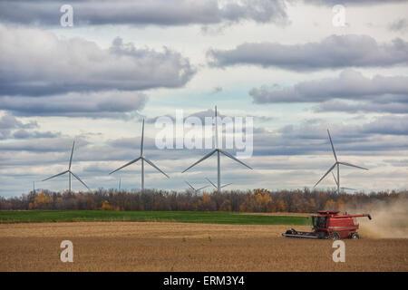 Ein Mähdrescher erntet Sojabohnen während Windturbinen drehen in der Ferne; Strathroy, Ontario, Kanada - Stockfoto